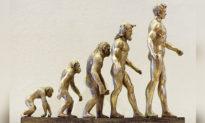 """Những điểm sơ hở trong thuyết tiến hoá của Darwin (Phần 4): """"Chọn lọc tự nhiên"""" không thuyết phục"""