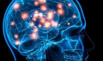 Thí nghiệm nổi tiếng: Ý thức có liên quan đến cơ học lượng tử