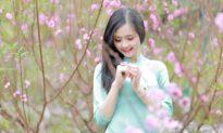 Mùa xuân chín - bức tranh xuân của đời người