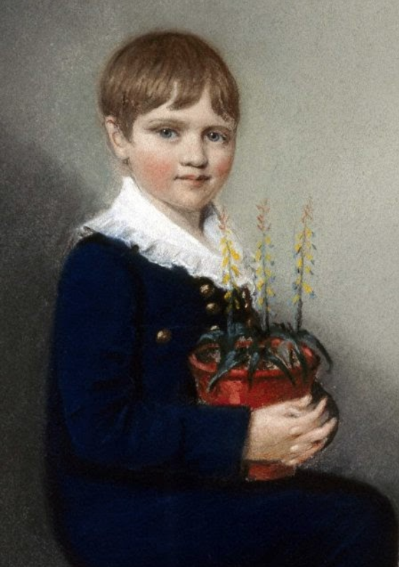 Darwin lúc 7 tuổi