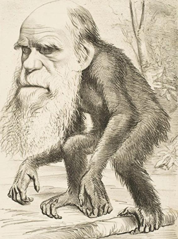 - Hình: Biếm họa năm 1870 phản ánh sự phản đối của Cơ Đốc giáo đối với ý tưởng rằng con người và vượn có tổ tiên chung.