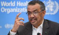 Tổng Giám đốc WHO dự định tái tranh cử nhiệm kỳ 2