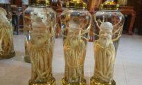 Dung tục hóa hình tượng Thần Phật, quả báo khôn cùng