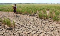 Kiểm soát gần 1/5 sông Mekong, Trung Quốc sẽ xả đập thủy điện để 'giúp các nước láng giềng'