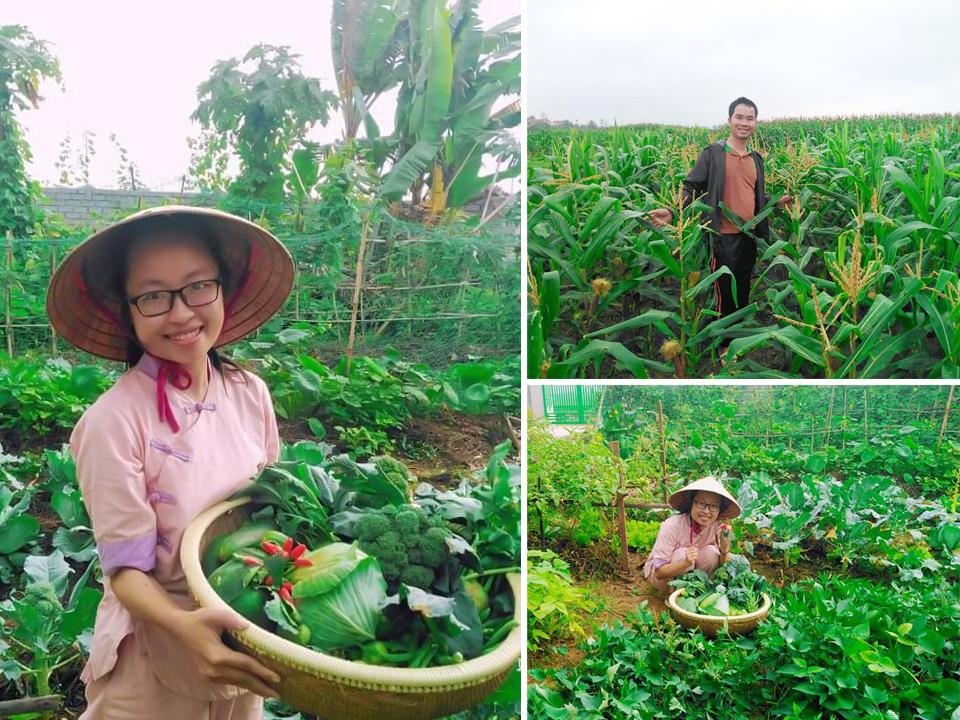 Sự trở về với nông nghiệp tự nhiên sẽ giải thoát con người ra khỏi sự lệ thuộc vào các sản phẩm hóa chất.