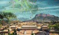 Người xưa nhìn nhận và thoát khỏi đại nạn châu chấu như thế nào?