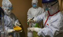 Virus Corona Vũ Hán đột biến 40 loại, xuất hiện bệnh nhân đầu tiên trên thế giới nhiễm đồng thời 2 loại virus