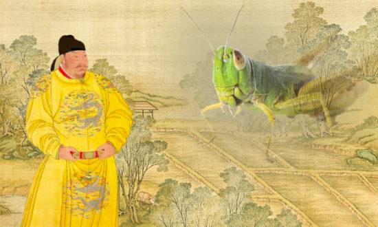 Hoàng thượng chỉ nói một câu, rợp trời châu chấu biến đâu mất rồi?