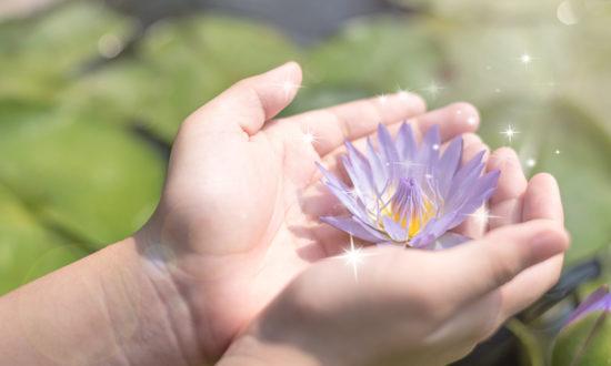 Những điều đẹp nhất không được nhìn thấy bằng mắt, mà bằng trái tim