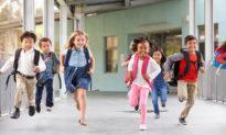 Trường mẫu giáo Hoa Kỳ giáo dục 'những đứa trẻ gấu': Không có quy củ, không có tự do