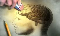 Thách thức giới hạn đạo đức: liệu các nhà khoa học Trung Quốc sẽ xóa ký ức não người?