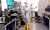 Các nhà nghiên cứu Trung Quốc phát hiện 2 loại virus Corona