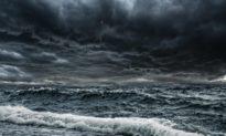 'Thời gian thực sự tồi tệ cho sự sống' -Sự khử oxy đại dương hiện nay được liên hệ với sự tuyệt chủng thời cổ đại