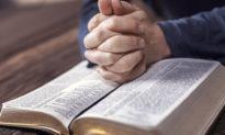 Đọc những lời tiên tri mang cho chúng ta niềm an ủi trong dịch bệnh?