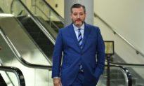 TNS Ted Cruz chất vấn giám đốc Twitter 'Tên quái nào đã giao cho ông phụ trách những gì mà chúng tôi được phép đọc?'