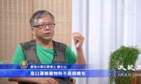 Tiến sĩ hóa học Hồng Kông tiết lộ về nguyên liệu giả làm khẩu trang của Trung Quốc