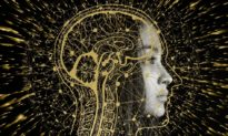 Đơn giản hóa mô hình toán học về 'vạn vật đều có ý thức'