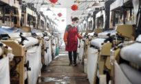 Nền kinh tế Trung Quốc 'không có dấu hiệu phục hồi' khi virus làm tê liệt xuất khẩu