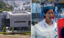 Vì sao và bằng cách nào virus tại Vũ Hán biến thành đại dịch toàn cầu?