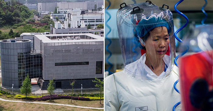Cơ sở dữ liệu của 'người đàn bà dơi' tại Viện Virus học Vũ Hán đã bị sửa đổi