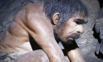 Phát hiện khảo cổ về thân thể người làm đảo lộn Thuyết Darwin: Phân tích ngắn