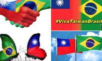 Lộ công văn ngoại giao của ĐSC Trung Quốc, 'Đài Loan vạn tuế' trở thành từ nóng trên Twitter