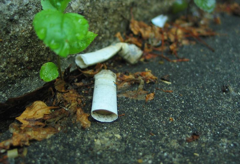 Họ cần mẫn đi nhặt từng mẩu giấy nhỏ hay những tàn thuốc ở bụi cây. Mục tiêu chính là làm sạch từng mẩu rác nhỏ trước khi chúng chất thành đống to ai cũng có thể chú ý.