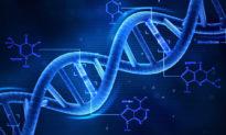 Bắc Kinh xây dựng quét cơ sở dữ liệu ADN - một việc làm vi phạm nhân quyền