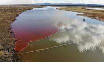 Putin ban bố tình trạng khẩn cấp quốc gia vì sự cố tràn 20.000 tấn dầu