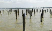 Những điều kỳ diệu đã làm nên ba trận thủy chiến trên sông Bạch Đằng (938 - 981 - 1288). Kỳ 2