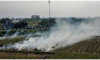 Airvisual xếp Hà Nội là thành phố ô nhiễm nhất thế giới