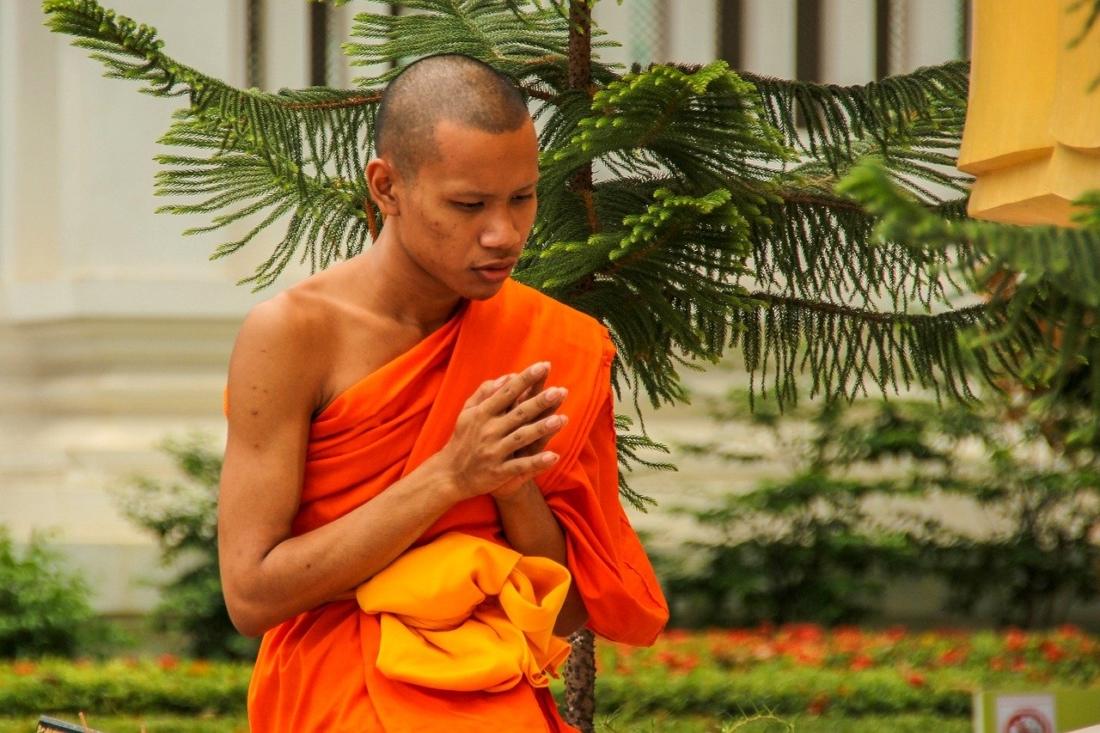 Tăng Hộ cháu bèn thuật lại đầu đuôi câu chuyện cho đức Phật Thích Ca Mâu Ni nghe
