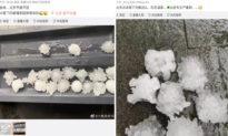 Điềm báo về nguồn gốc dịch? Bắc Kinh rơi mưa đá hình rất giống virus Corona