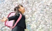Trẻ em Nhật giành chiến thắng ở vạch xuất phát từ bài học đầu tiên ở trường