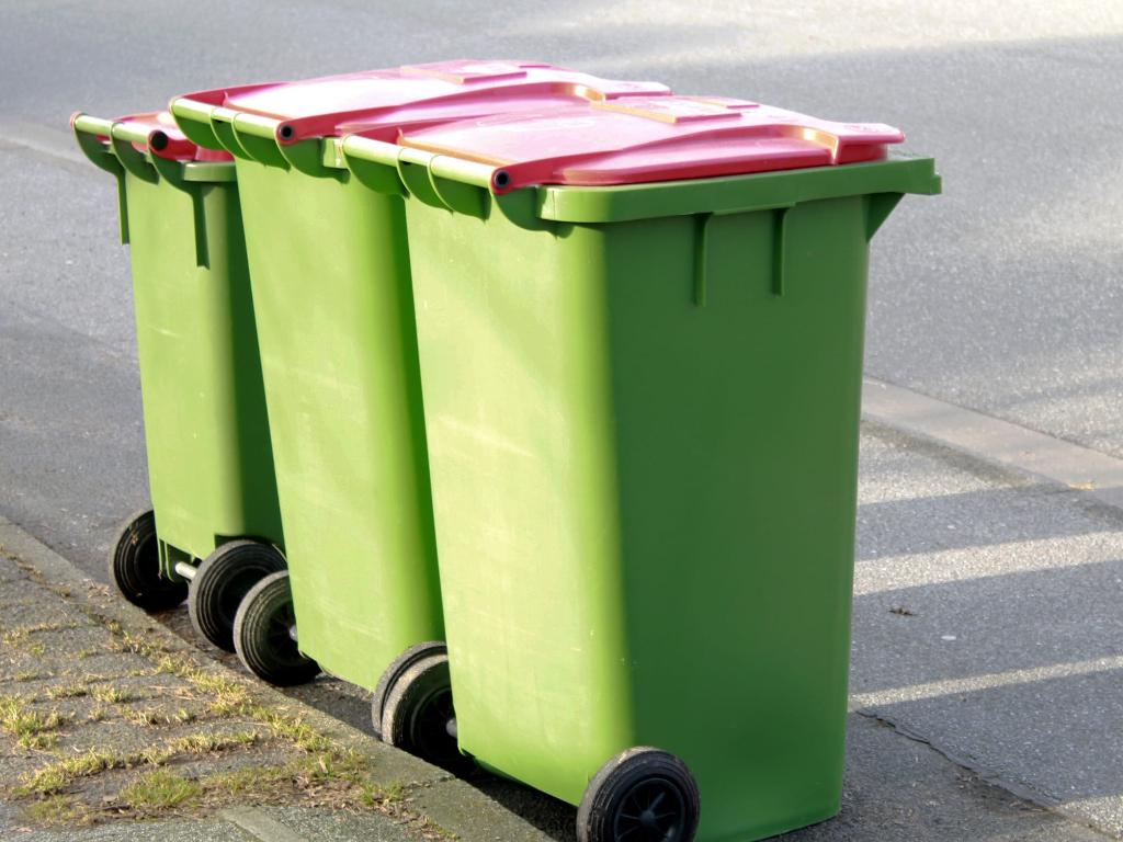 nếu như lắp đặt thùng rác trên phố, như vậy sẽ cần dùng một số tiền chung của người dân để duy trì nó, vì vậy họ quyết định không lắp thùng rác.