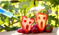 GMO - Thực phẩm biến đổi gen - Cú lừa thế kỷ (Phần 1)