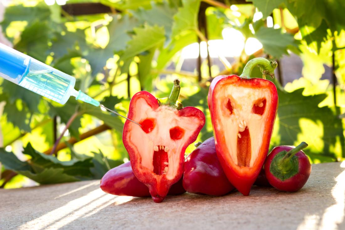 GMO - Thực phẩm biến đổi gen - Cú lừa thế kỷ (Phần 1)   NTD Việt Nam (Tân  Đường Nhân)
