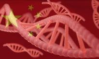 Trung Quốc thu thập hàng chục triệu mẫu DNA nam giới trong nỗ lực tăng cường giám sát người dân