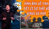Hình ảnh vệ tinh tiết lộ virus Corona đã bùng phát ở Vũ Hán nhiều tháng trước khi Trung Quốc báo cáo WHO