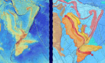 Zealandia, lục địa thứ 8 bị chìm dưới Thái Bình Dương hiển thị 'rõ ràng' trên bản đồ mới