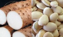 Cháo củ mài và đậu ván cải thiện suy dinh dưỡng ở trẻ và giải nhiệt