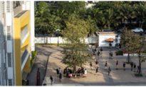 Quảng Ngãi cho toàn bộ học sinh nghỉ học để phòng COVID-19