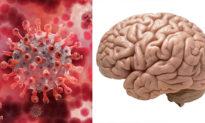 Các nhà khoa học cảnh báo về 'làn sóng' tổn thương não do COVID-19