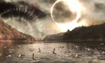 Âm thanh lạ, nhật thực, cá nhảy: Dấu hiệu báo trước động đất lớn?