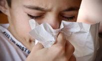 Viêm mũi dị ứng - Cách y học cổ truyền trị một chứng bệnh hiện đại