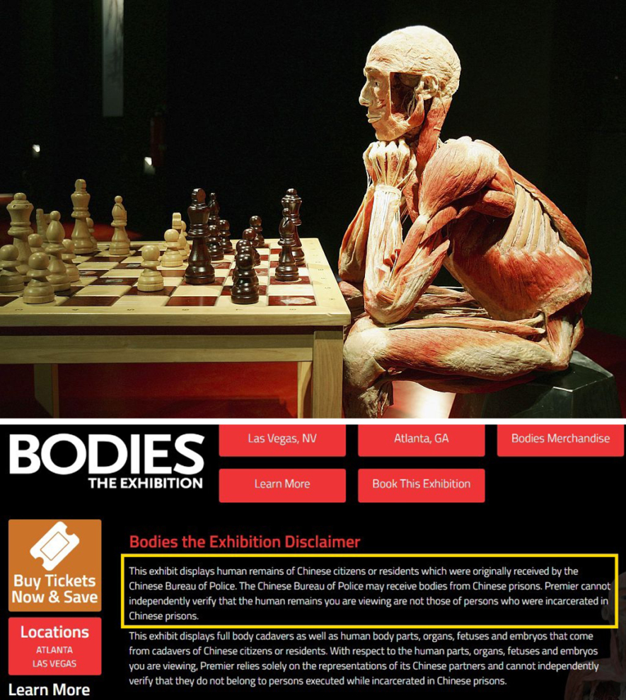 Nhà tổ chức Premier Exhibitions (đơn vị tổ chức triển lãm cơ thể đã nhựa hóa) công khai thừa nhận nguồn gốc của những cơ thể này là đến từ cơ quan công an Trung Quốc.