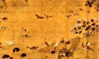 Trong lịch sử thực sự có những người hiểu tiếng chim thú
