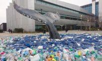 Trái đất đang bị 'đầu độc' bởi 194 tỷ khẩu trang, găng tay thải ra mỗi tháng