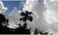 Sáng nay 7/8 lại có vùng áp thấp mới trên Biển Đông, mưa lớn diện rộng khắp 3 miền
