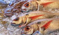 """Trung Quốc đang """"đầu độc"""" nhiều quốc gia bằng thực phẩm độc hại"""